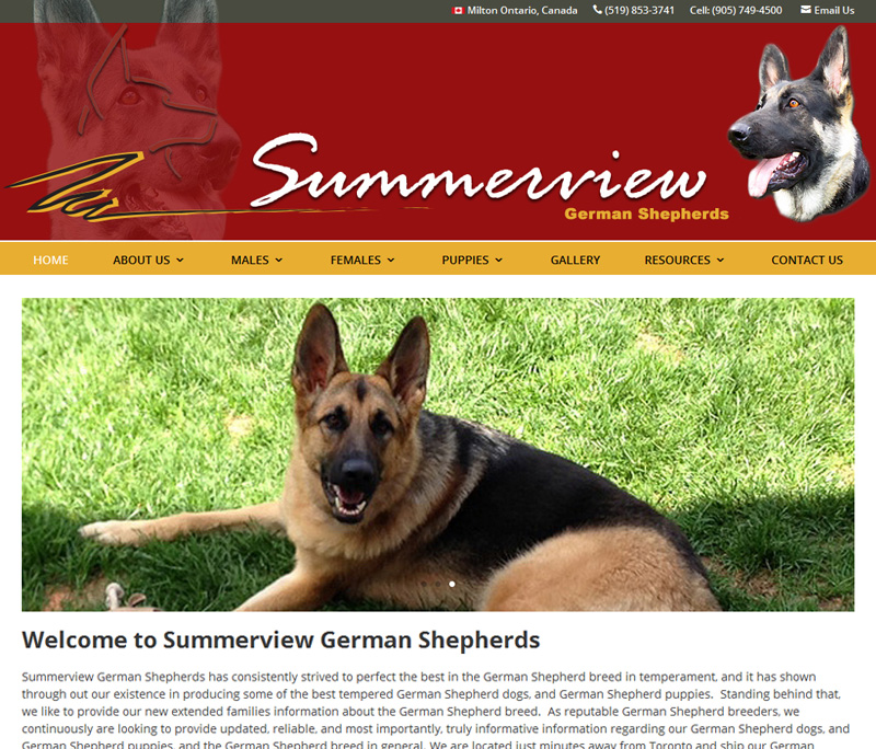 Summerview German Shepherds Website